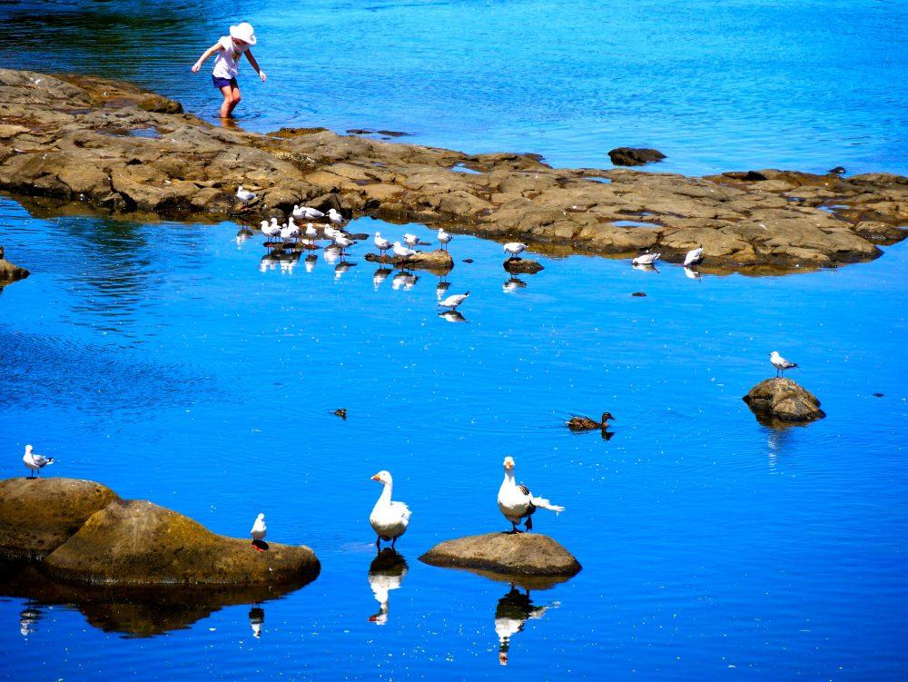 Kerikeri, North Island