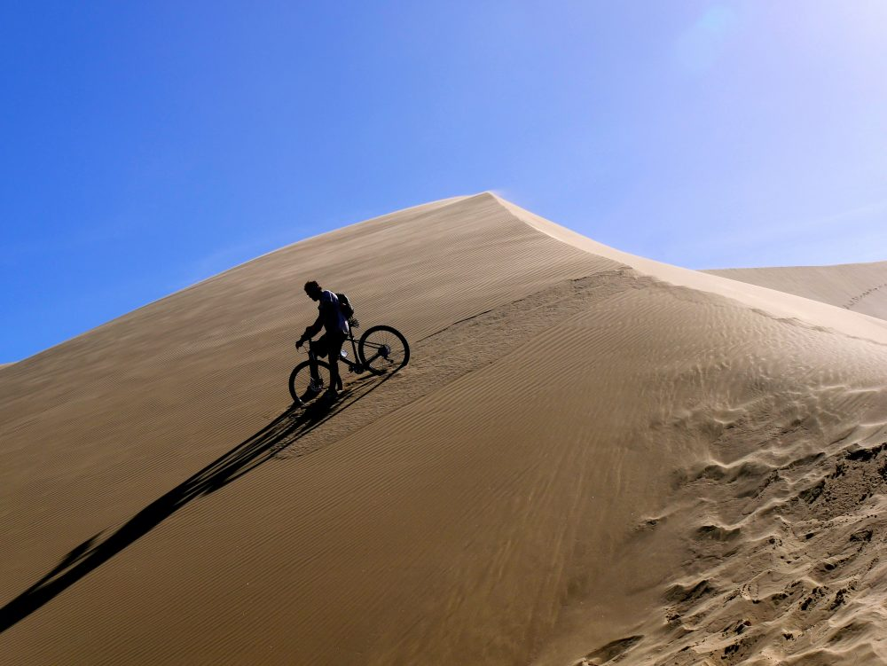 Giant Sand Dunes, North Island