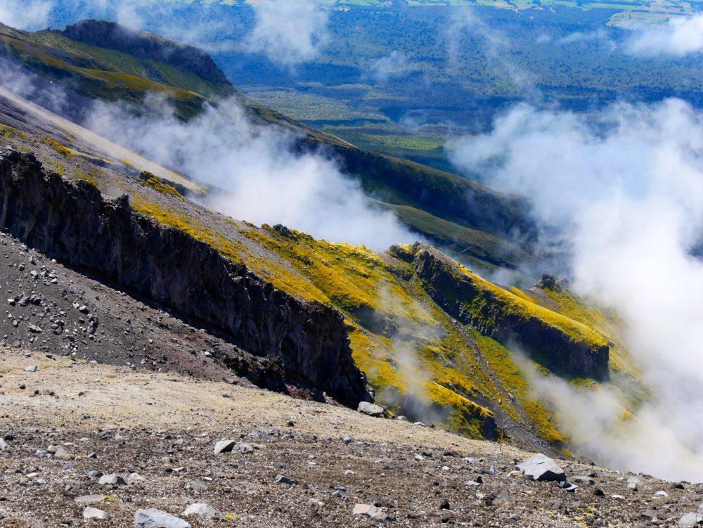 Mt. Taranaki, Egmont NP