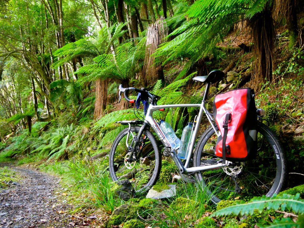 Old Ghost Trail, South Island